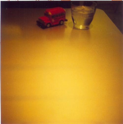 Polaroid20040107